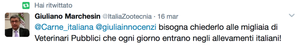 Animali come noi Giuliano Marchesin commento